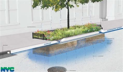 definition design llc nyc a new word for nyc bioswales new york