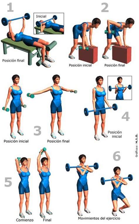 imagenes de ejercicios para workout pinterest the world s catalog of ideas