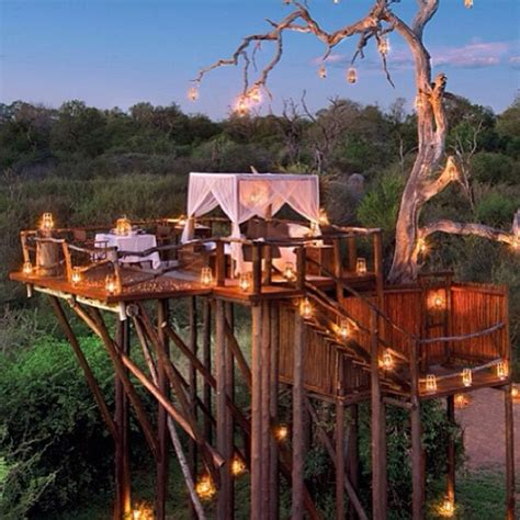 cool treehouses 15 ridiculously cool tree houses