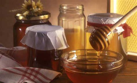 alimenti puliscono l intestino metodo adamski la nuova dieta per la pancia piatta leitv
