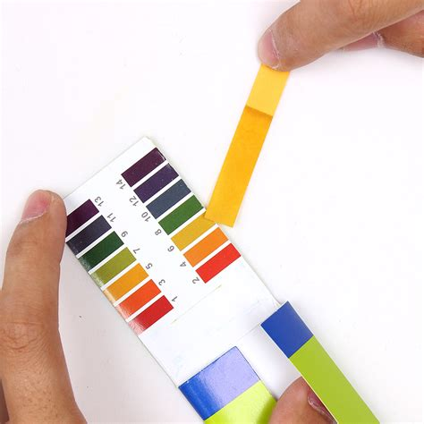 How To Make Litmus Paper At Home - new arrival 160 litmus paper test strips alkaline acid ph