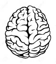 brain clipart image 1851