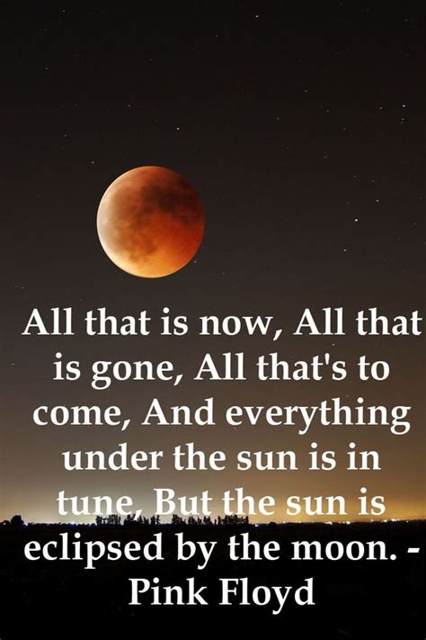 pink floyd comfortably numb lyrics meaning 853 best images about music on pinterest led zeppelin