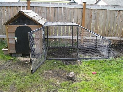 dog house chicken coop 18 easy and cheap diy backyard chicken coops