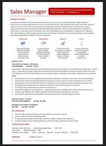 sales director resume sle resumes design