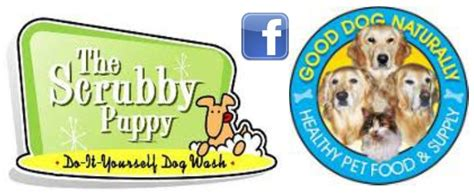 scrubby puppy grooming services at scrubby puppy the best for your pet at naturally