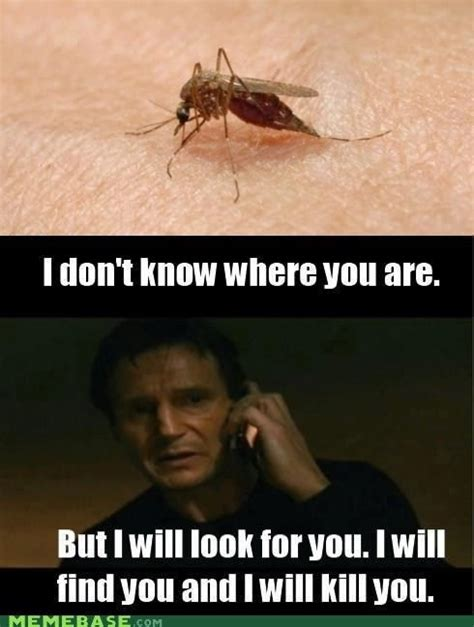 Mosquito Meme - suck while you still can imagepop memes pinterest