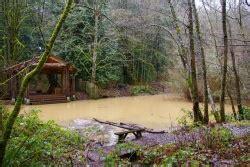 audubon sanctuaries loop hike hiking in portland oregon