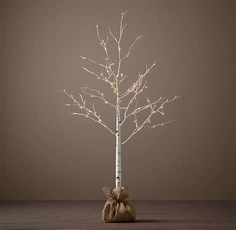 birch winter wonderland tree