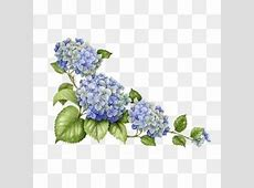 Hydrangea PNG Images | Vectors and PSD Files | Free ... Free Clipart Bride Silhouette