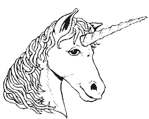 fantasy creatures coloring page unicorn head all kids