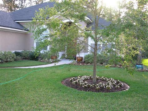 easy backyard garden ideas front yard landscaping ideas easy to accomplish