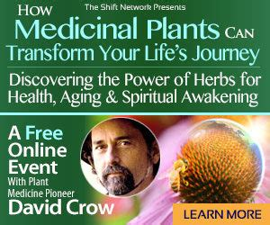the of being sober discovering a happy healthy wealthy free books discover how medicinal plants can help you keep healthy