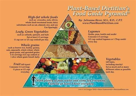 for a modern guide to plant based vegan gluten free recipes for busy lives books plant based diet food guide pyramid vegan lifestyle