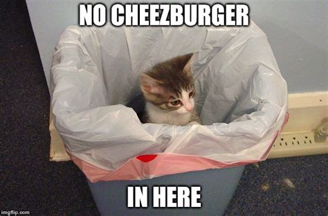 Cheezburger Meme Maker - when co workers start talking about what to get for lunch