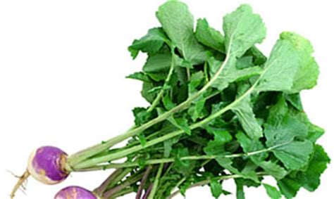 Turnip Detox by Turnip Greens Nutrition And Green Smoothies