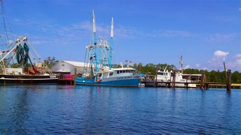 shrimp boat excursions shrimp boats on the bon secour river gulf shores al