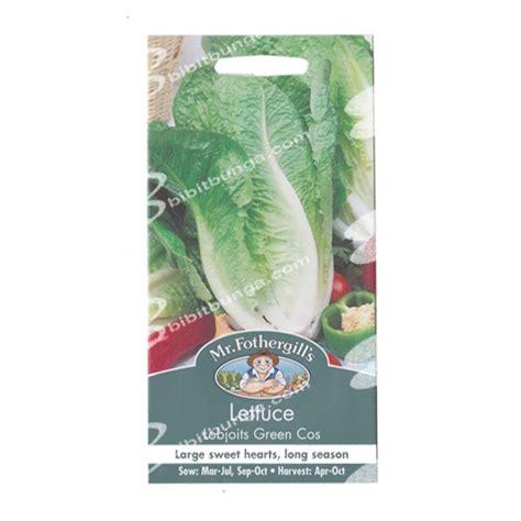 Promo Benih Selada Merah Lettuce Rosa Mr Fothergills Kemas benih lettuce lobjoits green cos 1250 biji mr fothergills bibitbunga
