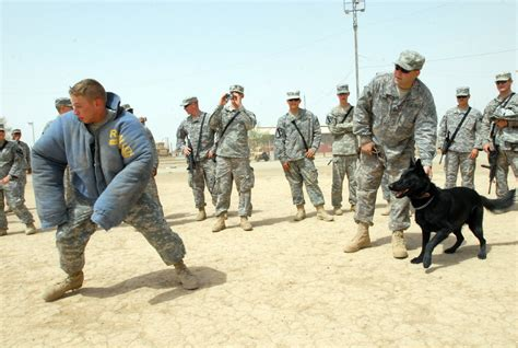 army handler file flickr the u s army working handler jpg wikimedia commons