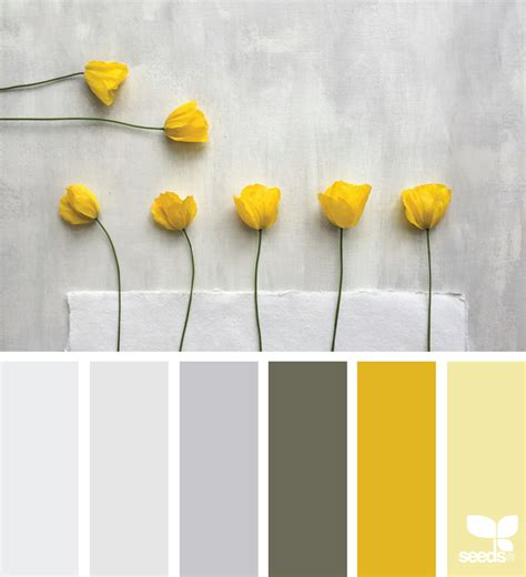 yellow color palette poppy yellow design seeds