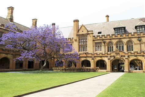 Mba Scholarships Usyd by Of Sydney Mba Scholarships For International
