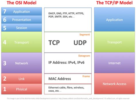 ip and 1 2 the tcp ip family of protocols