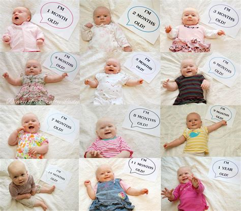 newborn collage board newborn photo diary of a crafty time lapse month by month baby