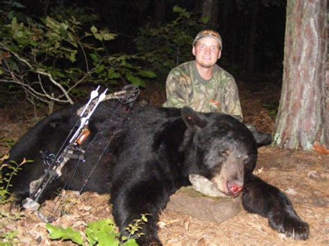 Coyote Rug The Top 10 Places To Hunt Big Bears Outdoorhub