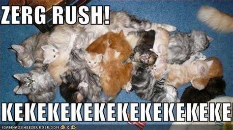 Zerg Rush Meme - image 104587 zerg rush know your meme