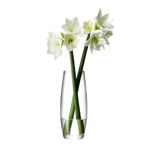 Stem Flower Vases by Buy Lsa International Flower Grand Stem Vase Amara