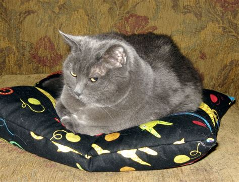 cat bean bag chair black cat bean bag pillow