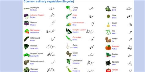 colors name list in urdu and english with pictures fruits names in english and urdu www pixshark com