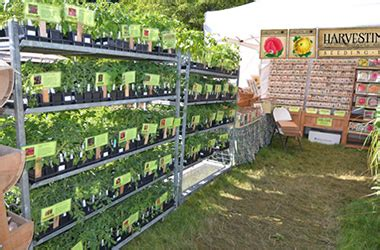 Leesburg Flower And Garden Festival Harvesting History Heirloom Seeds And Open Pollinated Seeds