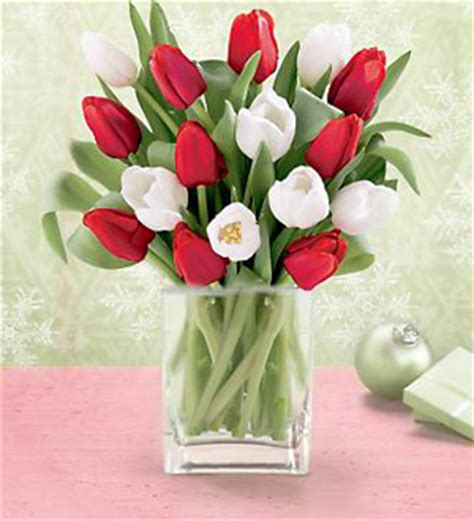 blooms and gifts 15 stem white tulips with a