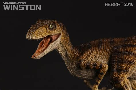 Rebor Compsognathus Bad Company september 28 2016 everything dinosaur