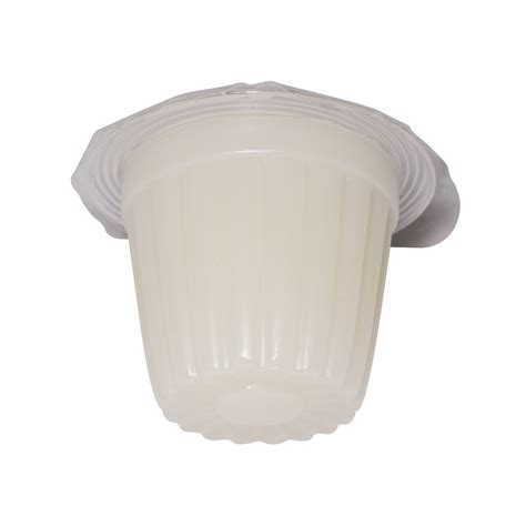 protein jelly feeders and more beetle insect jelly high protein