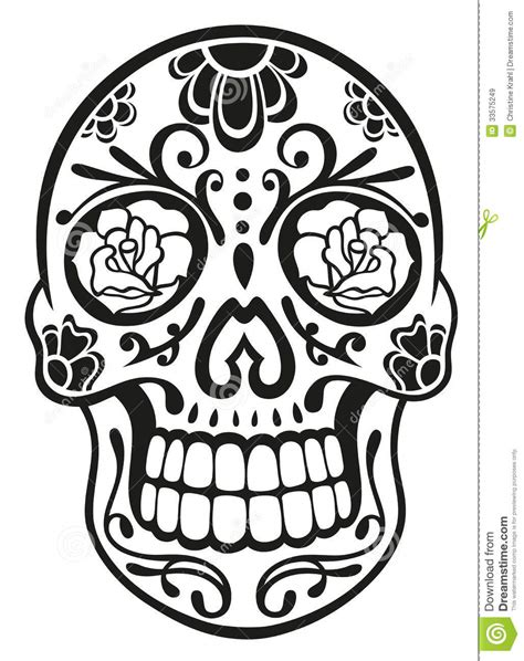 skull sugar skull stock vector illustration of
