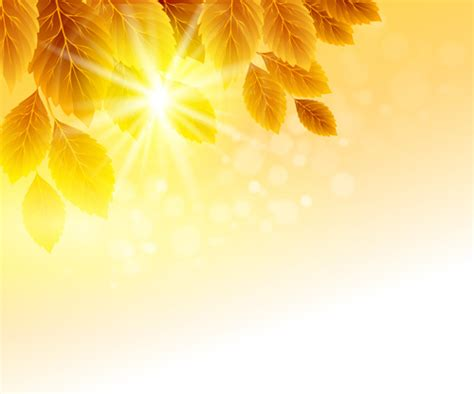 background design vector yellow yellow background flowers butterfly graphics design free