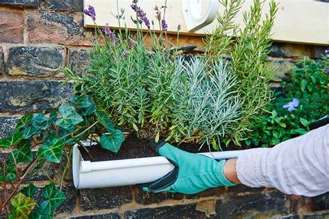 giardini verticali fai da te giardino verticale fai da te in 6 mosse guida passo passo