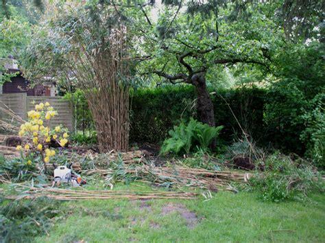 Sichtschutz Garten Bilder 3233 by B 228 Ume Vorgarten Nordseite Tipps F R Die