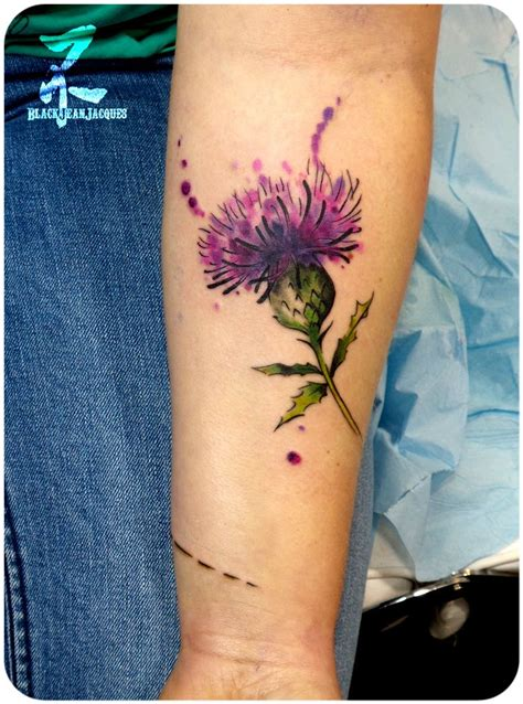 thistle tattoo designs pin by mcreynolds on tattoos