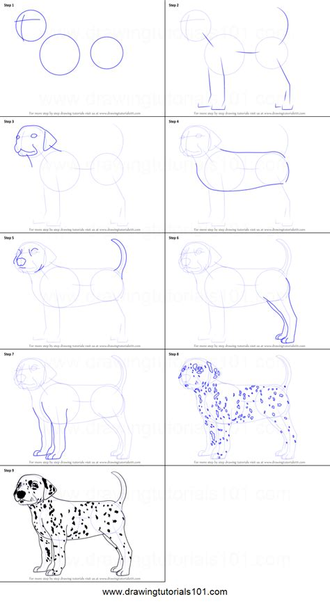 how to a dalmatian how to draw a dalmatian printable step by step drawing sheet drawingtutorials101