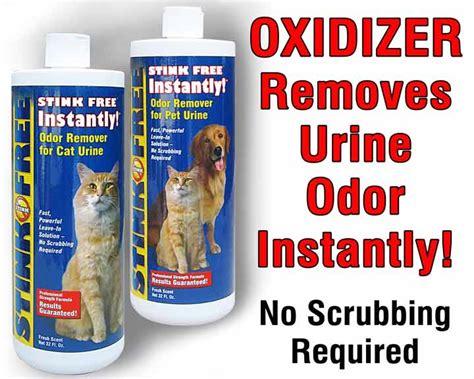 Urine Smell Out Of by Urine Odor Causes Symptoms Treatment Urine Odor