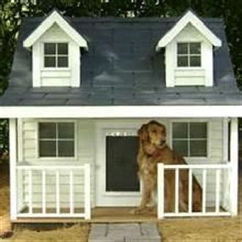 crazy dog houses 1000 images about crazy dog houses on pinterest dog houses little dogs and house