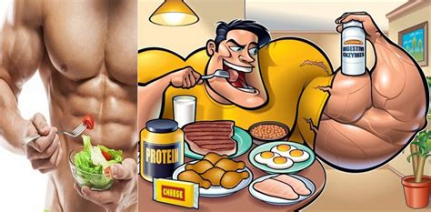 best food to feed your what are the best foods to eat after your workout to feed your muscles