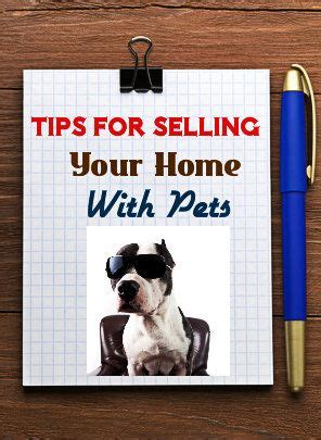 design tips for selling your home 1000 images about resource center on pinterest writing