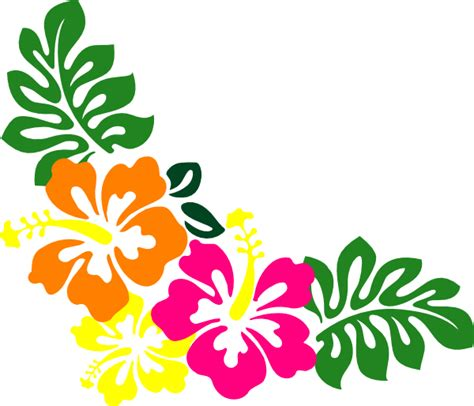 hibiscus pattern png hibiscus clipart border pencil and in color hibiscus