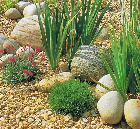 Small Pebble Garden Ideas Best 25 River Rock Patio Ideas On River Rock Path Decorative Rock Landscaping And