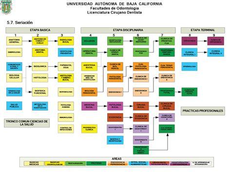 plan de estudios facultad de odontologa mapa curricular uabc odontolog 237 a
