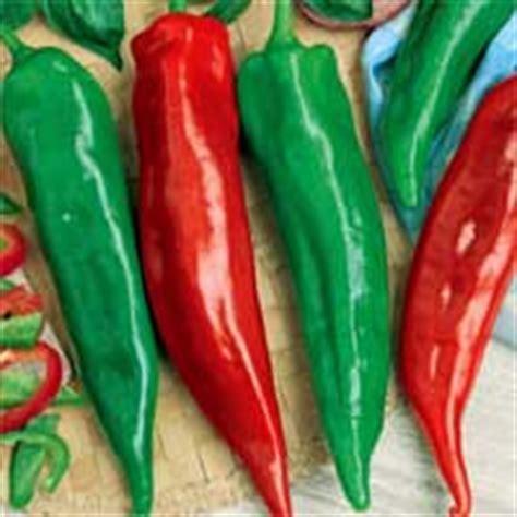 Garden Salsa Pepper by Vegetables Zen Cart The Of E Commerce